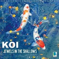 Koi Jewels in the Shallows 2018 Kois - Beautiful Status Symbols by Calvendo