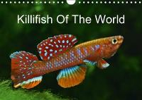 Killifish of the World 2018 Colourful Fish - Killifish from Africa and South America by Rudolf Pohlmann