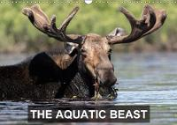 THE Aquatic Beast 2018 Moose in Their Favorite Lakes by Philippe Henry