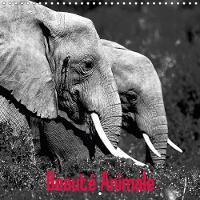 Beaute Animale 2018 Notre Planete Est Riche De Spectacles Naturels Uniques by Dominique Leroy