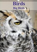 Birds Big Birds 2018 Images of Some of the Largest Birds by Jon Grainge