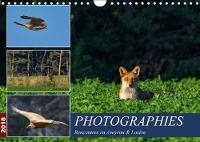 Photographies Rencontres En Aveyron & Lozere 2018 Photos Animalieres Au Detour Des Rencontres En Aveyron Et Lozere by Daniel ORTS