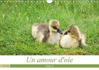 Un Amour D'oie 2018 La Vie De Mes Oies De Leurs Naissance a Aujourd'hui by Christina Ladan