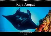 Raja Ampat - Amazing Underwater World 2018 Diving in Deep Ocean of Raja Ampat by Martin H. Kraus