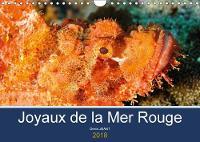 Joyaux De La Mer Rouge 2018 Decouvrez Les Fonds Riches En Couleurs De La Mer Rouge by Denis JEANT