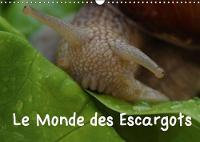 Le Monde Des Escargots 2018 Escargots Dans Notre Paysage by Elken Schlufter