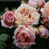Enjoleuses Roses 2018 Calendrier De Photos De Roses Inedites by Thierry Brillard