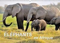Elephants en Afrique 2018 Les elephants d'Afrique sont imposants et puissants a la fois, mais parfois aussi affectueux et attentionnes. by Juergen Feuerer