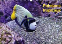 Poissons tropicaux 2018 A la decouverte des poisons tropicaux by PATRICK CASAERT