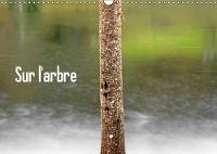 Sur l'arbre 2018 L'arbre, element architectural de nos paysages naturels. by Patrice Thebault