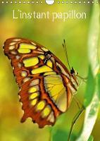L'instant papillon 2018 L'univers colore des papillons by Patrice Thebault