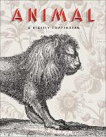 Animal A Beastly Compendium by Valerie Sueur-Hermel, Remi Mathis