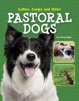 Collies, Corgis and Other Pastoral Dogs by Tammy Gagne