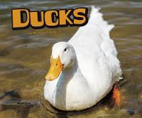 Ducks by Michelle M. Hasselius