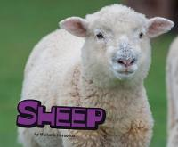 Sheep by Michelle M. Hasselius