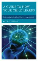 A Guide to How Your Child Learns Understanding the Brain from Infancy to Young Adulthood by David P. Sortino