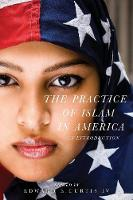 The Practice of Islam in America An Introduction by Edward E., IV Curtis