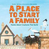 A Place To Start A Family by David Harrison