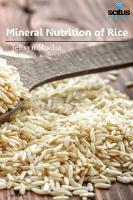 Mineral Nutrition of Rice by Jeltsyn Rocha