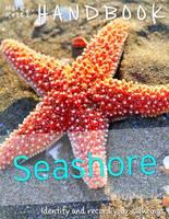 Handbook - Seashore by Camilla De la Bedoyere