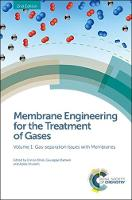 Membrane Engineering for the Treatment of Gases Volume 1: Gas-separation Issues with Membranes by Elena (The Institute on Membrane Technology - National Research Council ( ITM-CNR), Italy) Tocci, Maurizio (Universi Fermeglia