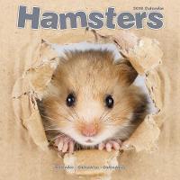 Hamsters Calendar 2018 by Avonside Publishing Ltd.