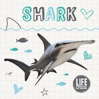 Shark by Holly Duhig