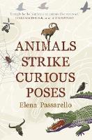 Animals Strike Curious Poses by Elena Passarello