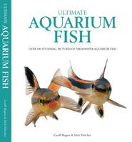 Ultimate Aquarium Fish Over 500 Stunning Pictures of Freshwater Aquarium Fish by