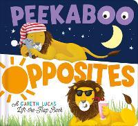 Peekaboo Opposites by Gareth Lucas