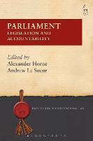 Parliament Legislation and Accountability by Alexander Horne