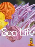 Sea Life by Katey Pike, Garda Turner