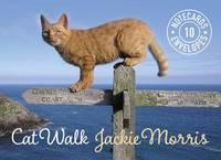 Cat Walk Notecards by Jackie Morris