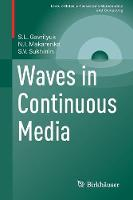 Waves in Continuous Media by Sergey Gavrilyuk, Nikolai Makarenko, Sergey Sukhinin