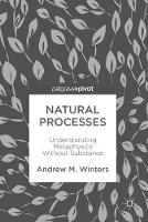 Natural Processes Understanding Metaphysics Without Substance by Andrew M. Winters