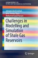 Challenges in Modelling and Simulation of Shale Gas Reservoirs by Jebraeel Gholinezhad, John Senam Fianu, Mohamed Galal Hassan