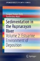 Sedimentation in the Rupnarayan River Volume 2: Estuarine Environment of Deposition by Swapan Kumar Maity, Ramkrishna Maiti
