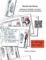 Muskeln Des Beines by Thomas J Strasmann