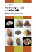 Die Brachiopoden Des Deutschen Malm by Jurgen Hoflinger