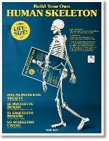 Build Your Own Human Skeleton by Taschen