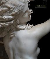 Bernini by Andrea Bacchi