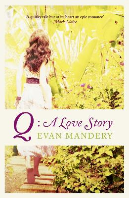 Q A Love Story by Evan J. Mandery