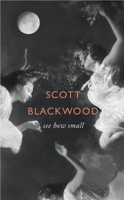 See How Small by Scott Blackwood