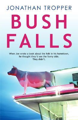 Bush Falls by Jonathan Tropper