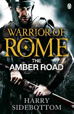 Warrior of Rome: the Amber Road by Harry Sidebottom