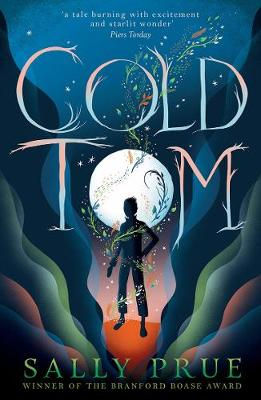 Cover for Cold Tom by Sally Prue