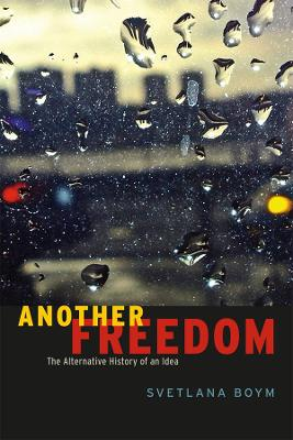 Another Freedom The Alternative History of an Idea by Svetlana Boym