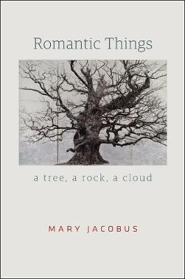 Romantic Things A Tree, a Rock, a Cloud by Mary Jacobus