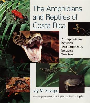 The Amphibians and Reptiles of Costa Rica A Herpetofauna Between Two Continents, Between Two Seas by Jay M. Savage, Michael Fogden, Patricia Fogden