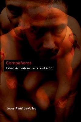 Companeros Latino Activists in the Face of AIDS by Jesus Ramirez-Valles